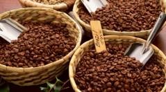 Кофейные туры для любителей кофе